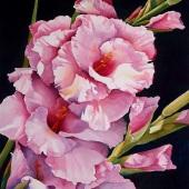 """Botanicals"" – August 2019 – 1st Place -   Linda Mullen - ""Gladiola Joy"""