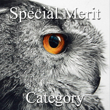All Women – Special Merit Category post image