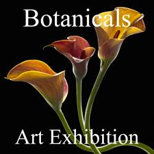 Botanicals 2013 Online Art Exhibition