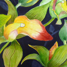 Cymbidium Orchid Watercolor