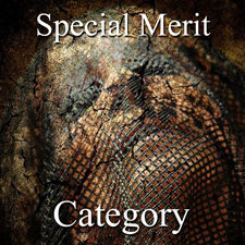 Figurative Art Exhibition – Special Merit Category post image