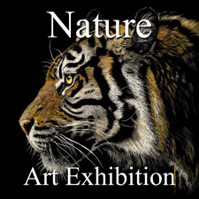 """Nature"" Art Exhibition – YouTube Video post image"