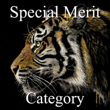 Nature Art Exhibition – Special Merit Category post image