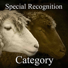 All Photography – Special Recognition Category post image