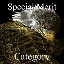 Special Merit - 1st Place - OA - Paint -de_la_Torre_Naharro (1) Img #4  Tenebrae