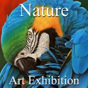 """Nature"" 2016 Art Exhibition – YouTube Video"