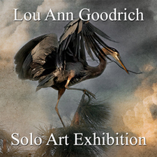 Lou Ann Goodrich - Solo Art Exhibition