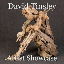 David Tinsley – Artist Showcase post image