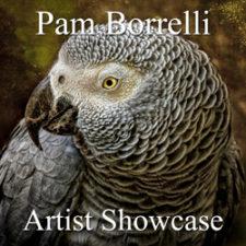Pam Borrelli - Artist Showcase Feature