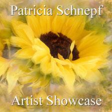 Patricia Schnepf  - Artist Showcase