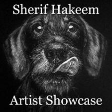 Sherif Hakeem - Artist Showcase