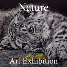 Nature Art Exhibition - November 2018