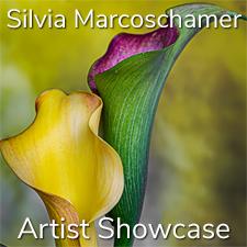 Silvia Marcoschamer - Artist Showcase
