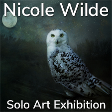 Nicole Wilde – Solo Art Exhibition