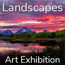 """""""Landscapes"""" Art Exhibition – July 2021"""