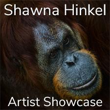Shawna Hinkel – Artist Showcase