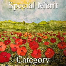 2017 Landscapes Exhibition - Part 2  Special Merit Category