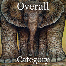 2017 Animals Exhibition - Part 1 - OA & Special Merit