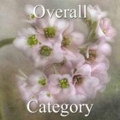 2016 Botanicals Exhibition - Part 1 - OA & Special Merit