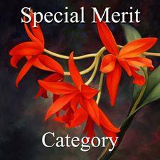 2915 Botanicals Exhibition -  Part 3 - Special Merit