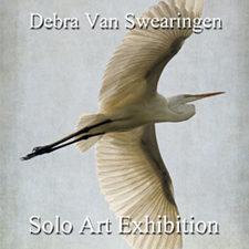 Debra Van Swearingen - Solo Art Exhibition