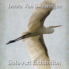 Debra Van Swearingen - Solo Art