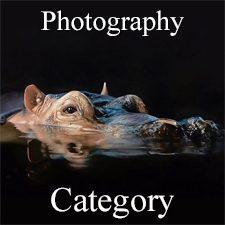 Animals 2019 Art Exhibition - Part 2 - Photography, Digital & 3D Categories
