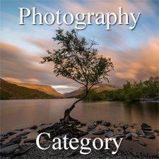 Landscapes 2019 Art Exhibition - Part 2 - Photography, Digital & 3D Categories