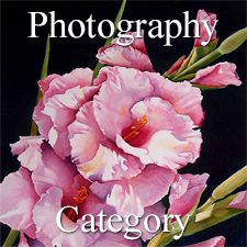 """Botanicals"" 2019 Art Exhibition - Part 2 – Photography & Digital Categories"