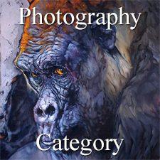 """""""Nature"""" 2019 Art Exhibition - Part 2 – Photography & Digital & 3D Categories"""