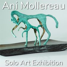 Ani Mollereau - Solo Art Exhibition