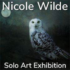 Nicole Wilde - Solo Art Exhibition